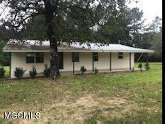 1581 Freeman Town Rd, Richton, MS 39476 (MLS #366751) :: Coastal Realty Group