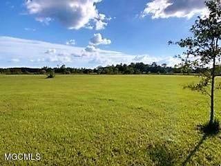 5.3 Acres James Pierce Road, Moss Point, MS 39562 (MLS #368042) :: The Demoran Group of Keller Williams