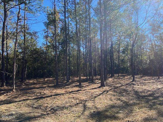 Holder Road, Vancleave, MS 39565 (MLS #368683) :: Exit Southern Realty