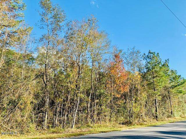 23.5 Acres Fig Farm Rd, Lucedale, MS 39452 (MLS #368708) :: Exit Southern Realty