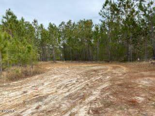 Address Not Published, Bay St. Louis, MS 39520 (MLS #370147) :: Berkshire Hathaway HomeServices Shaw Properties