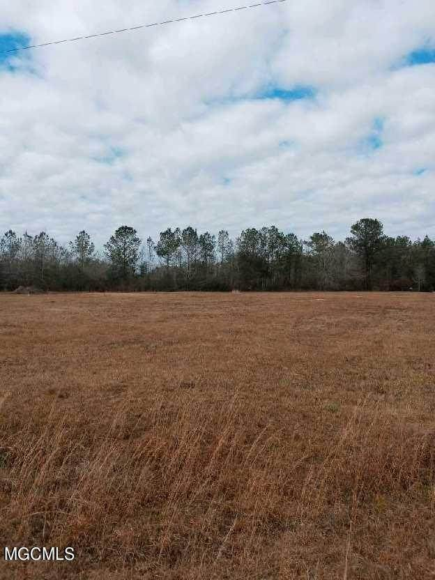 00 Wolf River Rd, Gulfport, MS 39503 (MLS #371970) :: Coastal Realty Group