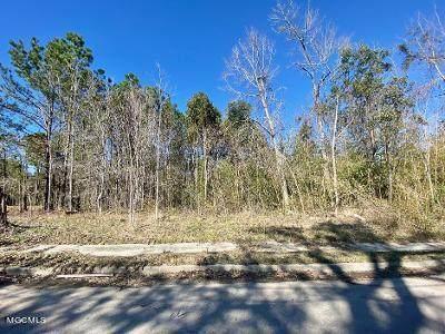 0 Harrison Ct, Bay St. Louis, MS 39520 (MLS #371991) :: Dunbar Real Estate Inc.