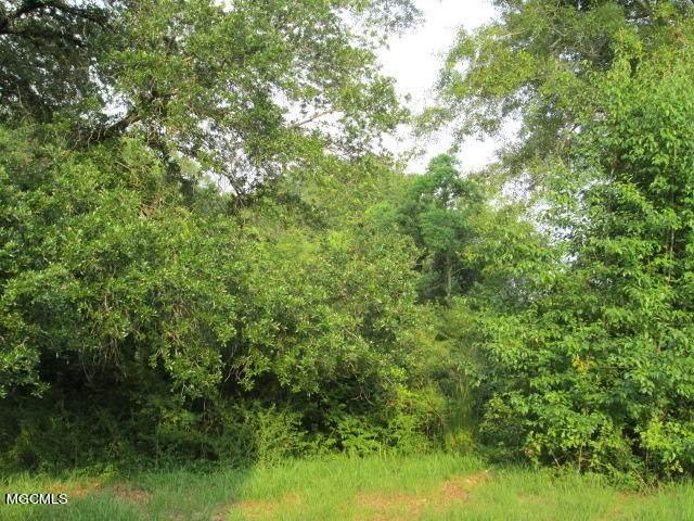 Nhn Hurley Wade Rd, Moss Point, MS 39562 (MLS #372026) :: The Demoran Group at Keller Williams