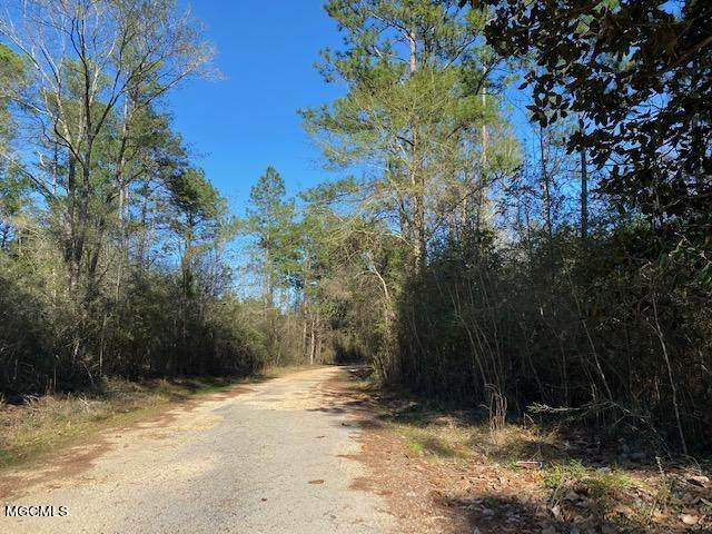 Lot 38 Magnolia Dr, Perkinston, MS 39573 (MLS #372935) :: Biloxi Coastal Homes