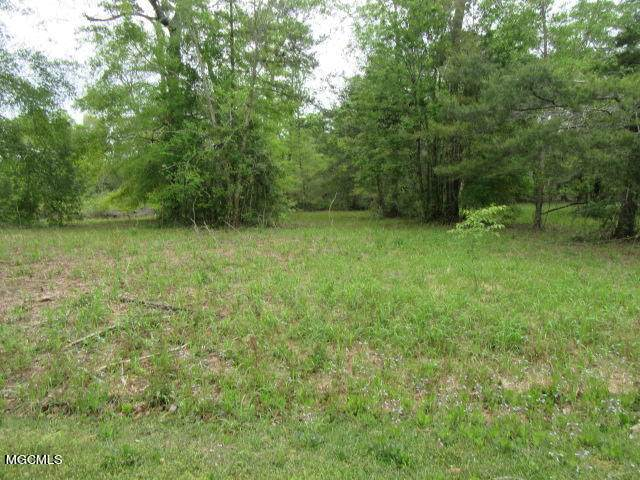 0 River Walk Dr, Vancleave, MS 39565 (MLS #374136) :: Coastal Realty Group
