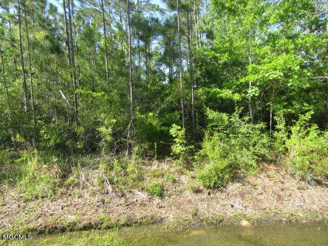 0 White Wood Dr, Gautier, MS 39553 (MLS #374167) :: Coastal Realty Group