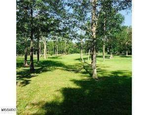 3561 Lickskillet Rd, D'iberville, MS 39540 (MLS #374656) :: Berkshire Hathaway HomeServices Shaw Properties