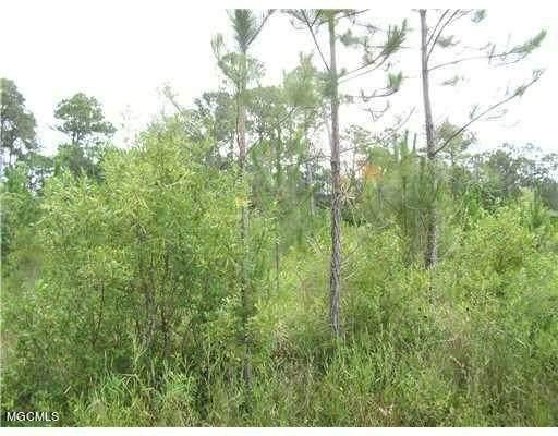 Lot 28 Heidelburg Dr, Gautier, MS 39553 (MLS #376067) :: Dunbar Real Estate Inc.