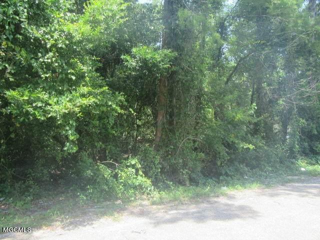 599 Mcdonnell Ave, Biloxi, MS 39531 (MLS #376461) :: The Demoran Group at Keller Williams