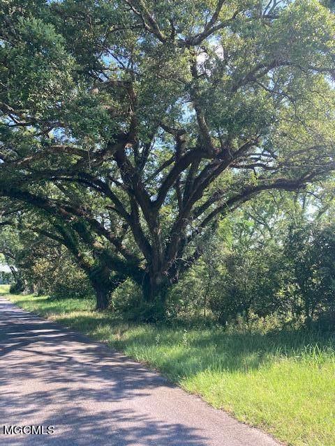 40 Acres Dan Howell Rd, Lucedale, MS 39452 (MLS #376626) :: Biloxi Coastal Homes
