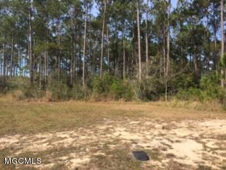 103 Sawgrass, Gautier, MS 39553 (MLS #327453) :: Ashley Endris, Rockin the MS Gulf Coast