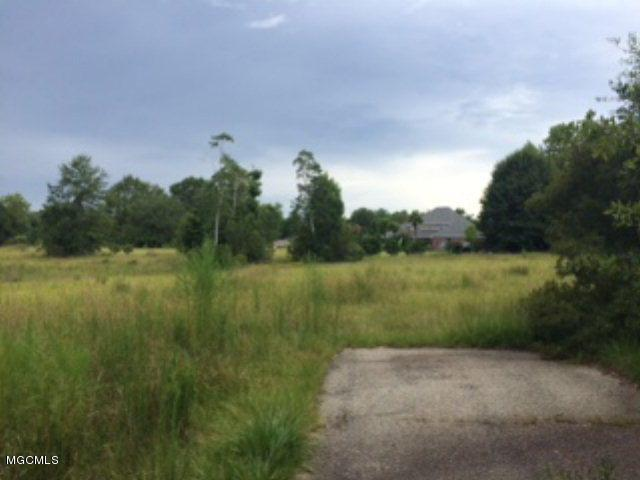 96 Lands End, Carriere, MS 39426 (MLS #329600) :: Amanda & Associates at Coastal Realty Group