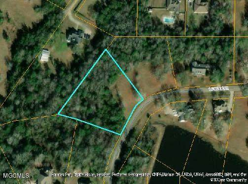 Lot 110 Long Lake Dr, Carriere, MS 39426 (MLS #358552) :: The Sherman Group