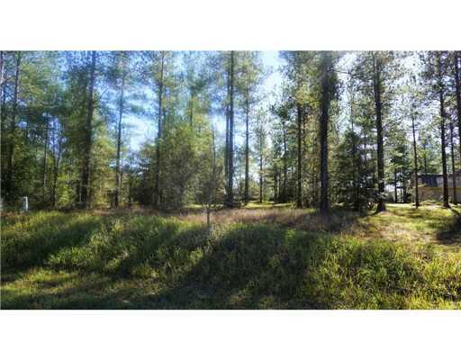 Nkn Bennie Wall (Lot 4) Rd, Lucedale, MS 39452 (MLS #317235) :: Amanda & Associates at Coastal Realty Group