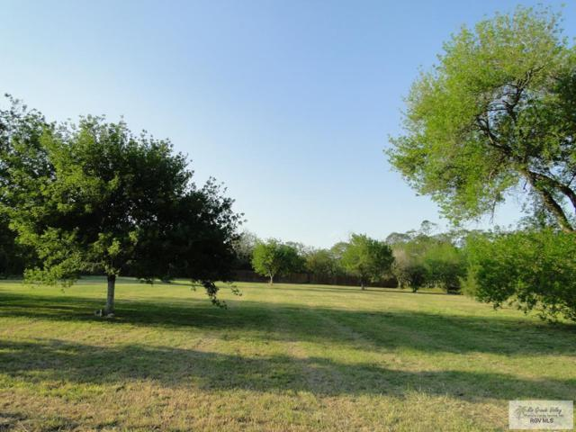 39 Tandy Rd. 1.2 ACRE LOT, Brownsville, TX 78523 (MLS #29710791) :: The Martinez Team