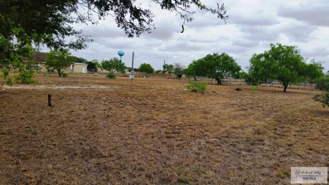 0 N Business 77 #27, Combes, TX 78552 (MLS #29711056) :: The Martinez Team