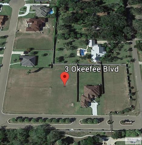 3 Okeefee Blvd., Harlingen, TX 78550 (MLS #29711443) :: Berkshire Hathaway HomeServices RGV Realty