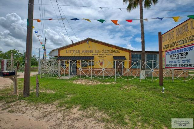 11207 W Mile 6, Weslaco, TX 78599 (MLS #29712760) :: The Monica Benavides Team at Keller Williams Realty LRGV