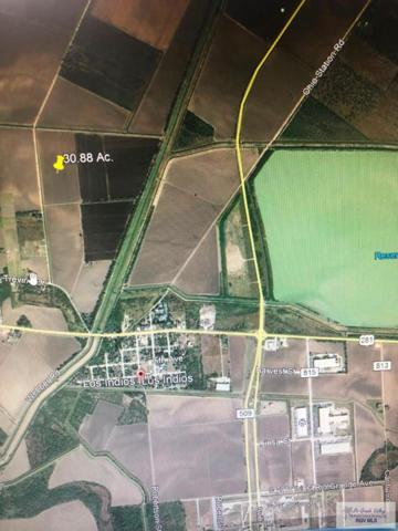 30.880 Acres Weber Rd #1, Los Indios, TX 78567 (MLS #29713186) :: The Monica Benavides Team at Keller Williams Realty LRGV