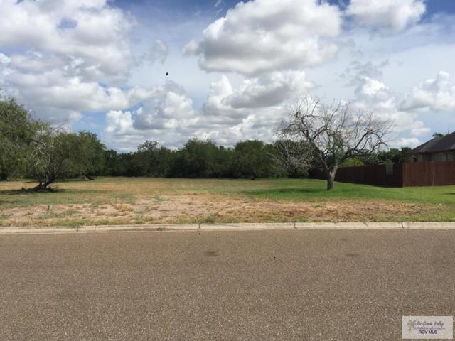 0 Heron Cove Dr., Brownsville, TX 78526 (MLS #29713717) :: The Monica Benavides Team at Keller Williams Realty LRGV