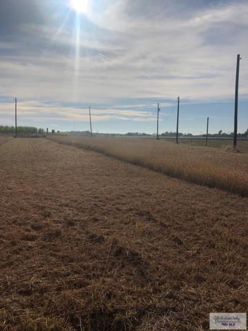 Lot 25 E El Rosal St Lot 25, La Feria, TX 78559 (MLS #29715267) :: The Monica Benavides Team at Keller Williams Realty LRGV