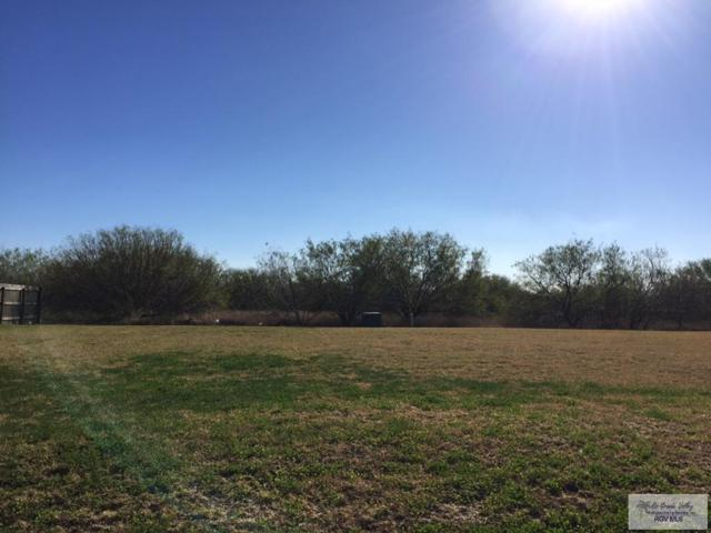 Lot 7 Blue Sage Ln Lot 7, Brownsville, TX 78521 (MLS #29715413) :: The Martinez Team