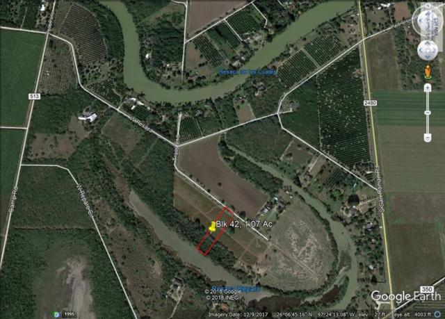 0 Trails End Road, Bayview, TX 78566 (MLS #29718358) :: The Monica Benavides Team at Keller Williams Realty LRGV