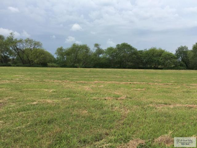 Lot 29 Village East Dr, Los Fresnos, TX 78566 (MLS #29718753) :: The Monica Benavides Team at Keller Williams Realty LRGV