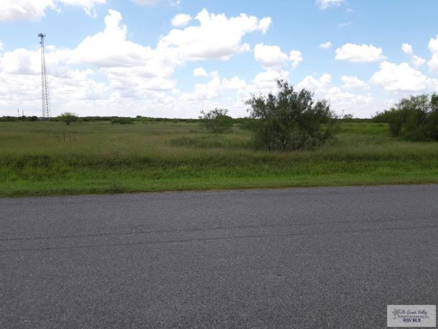 000 San Fernando East Rd., Rio Hondo, TX 78583 (MLS #29718843) :: The MBTeam