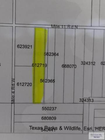 00 Mile 11, Weslaco, TX 78599 (MLS #29722563) :: The MBTeam