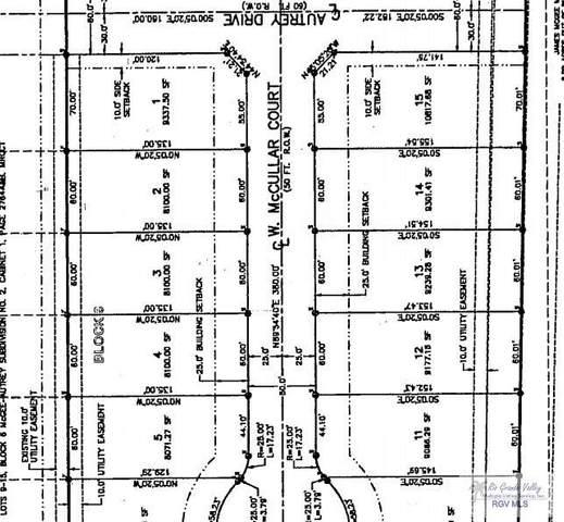 14 W Mccullar Ct, Primera, TX 78552 (MLS #29723471) :: The MBTeam