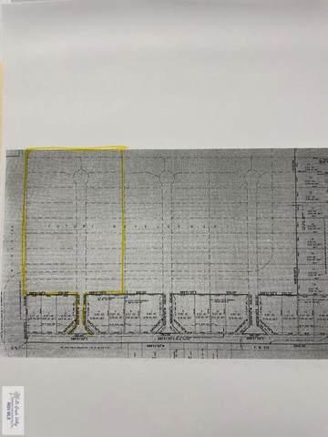 15.23 Fm 510, San Benito, TX 78586 (MLS #29726570) :: The MBTeam