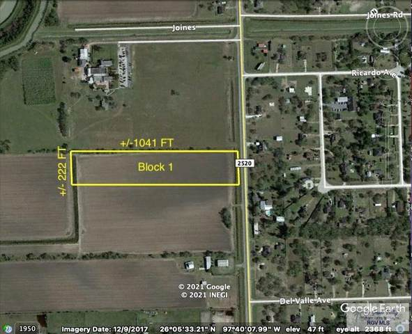 Tract 1 S Fm 2520, San Benito, TX 78586 (MLS #29727179) :: The MBTeam