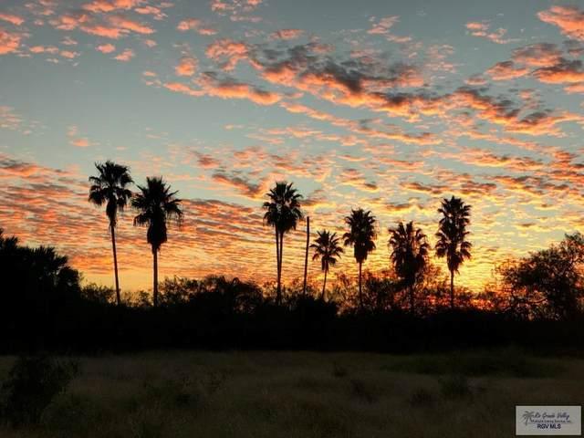0 Gavito Ranch Rd, Brownsville, TX 78521 (MLS #29728293) :: The MBTeam