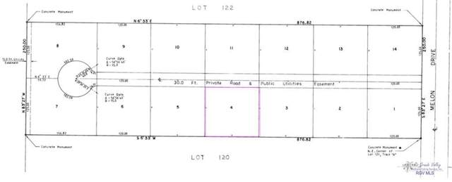 BLK 4 Melon Dr. Blk 4, Los Fresnos, TX 78566 (MLS #29728868) :: The MBTeam