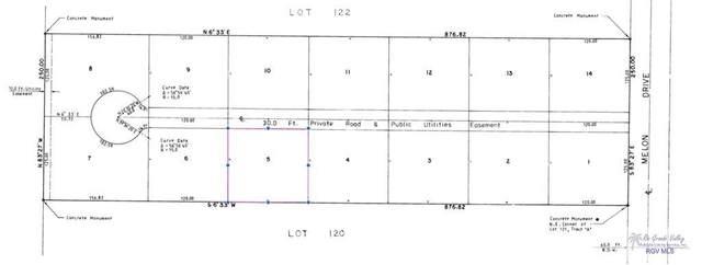 BLK 5 Melon Dr. Blk 5, Los Fresnos, TX 78566 (MLS #29728869) :: The MBTeam