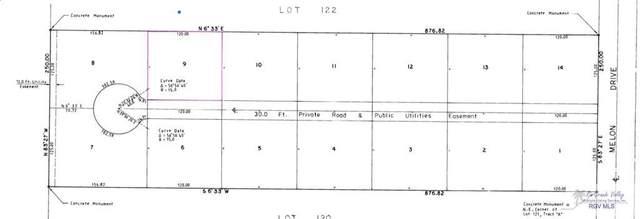 BLK 9 Melon Dr. Blk 9, Los Fresnos, TX 78566 (MLS #29728873) :: The MBTeam