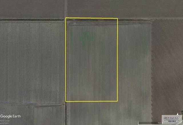 24.61 AC Jimenez Rd., RANGERVILLE, TX 78567 (MLS #29729384) :: The MBTeam