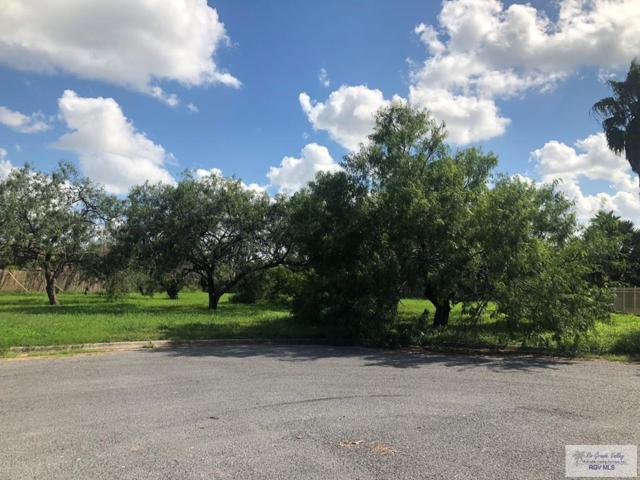 20 Mesquite Branch, Brownsville, TX 78520 (MLS #29714224) :: The Monica Benavides Team at Keller Williams Realty LRGV