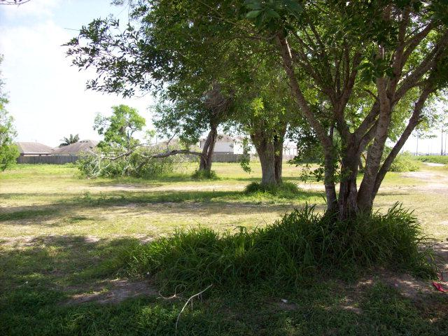 0 Hwy 100, Brownsville, TX 78566 (MLS #29647509) :: The Martinez Team