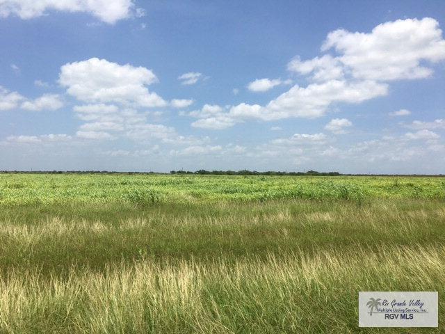 40 acres Fm 1762, Raymondville, TX 78580 (MLS #29701726) :: The Martinez Team