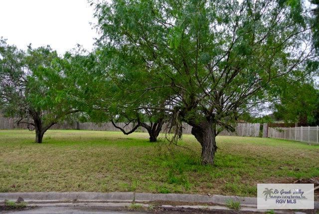 0 Mesquite Branch, Brownsville, TX 78520 (MLS #29704492) :: The Martinez Team