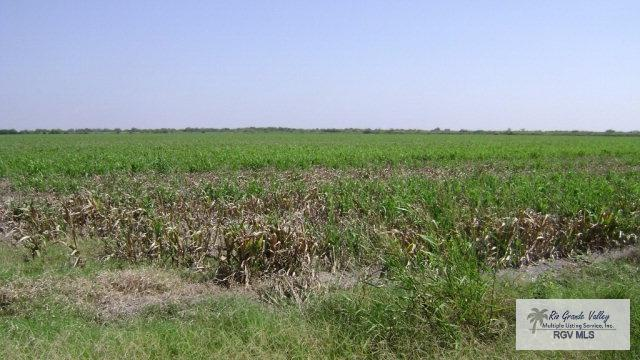 0 S Indiana Ave. 55 ACRES, Brownsville, TX 78521 (MLS #29709580) :: The Martinez Team