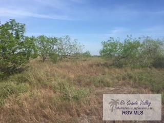 0 Tract 43 Rd, Los Fresnos, TX 78566 (MLS #29711253) :: The MBTeam