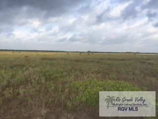 0 Hwy 100, Los Fresnos, TX 78566 (MLS #29711255) :: The Martinez Team