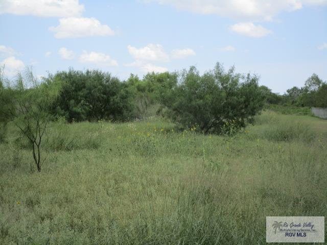 tbd Perk Ln., Harlingen, TX 78552 (MLS #29713305) :: The MBTeam