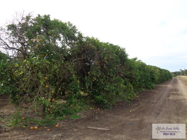 10 AC S Mile 6 1/2 West, Weslaco, TX 78596 (MLS #29715340) :: The Monica Benavides Team at Keller Williams Realty LRGV