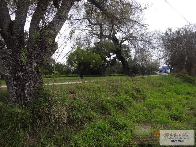 18571 Fm 508, Harlingen, TX 78550 (MLS #29715779) :: The Monica Benavides Team at Keller Williams Realty LRGV