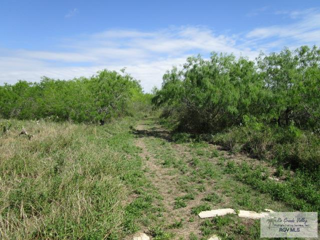 TBD Line 20 Rd., San Benito, TX 78586 (MLS #29716757) :: The Monica Benavides Team at Keller Williams Realty LRGV